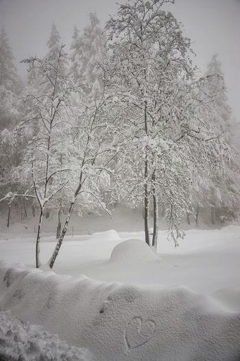 Schnee mit Herz