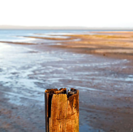 Close-up of wooden posts on beach