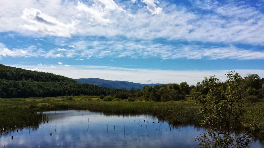 Water Reflections Reflecting Glassy Water Beauty In Nature Beautiful Blue Sky And White Clouds. Beautiful Blue Sky☁ Calm Peaceful Green Mountain State Open Edit