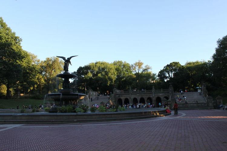 Central Park - NYC Central Park Fountain