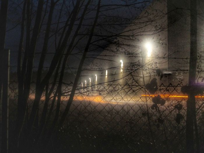 Nightshot At The Edge Of The Forest Illuminated Building Behind The Fence... Darkness And Light Winternights Cold Atmosphere Trees Growth Illuminated Night Electricity  Lighting Equipment No People Nature Outdoors Every Picture Tells A Story The Secret Spaces