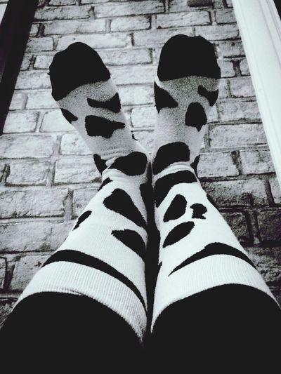 TK Maxx Socksie Socks Blackandwhite Pattern Tk Maxx Cowsocks