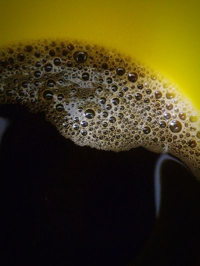 Macro Beauty Coffee Bubbles