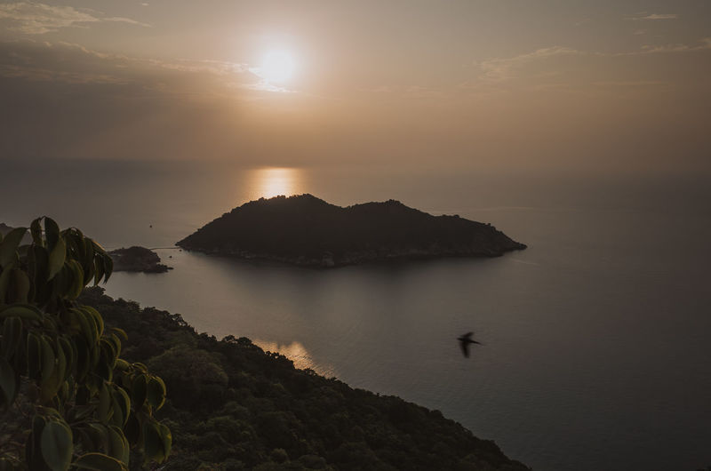 evening scenery from a high-up viewpoint at Koh Tao Island, Thailand during sunset Water Sky Beauty In Nature Scenics - Nature Tranquility Tranquil Scene Sunset Sea Nature Rock Sun Mountain Idyllic Cloud - Sky Non-urban Scene Solid Silhouette Rock - Object No People Outdoors Vacations Holidays Destination Island