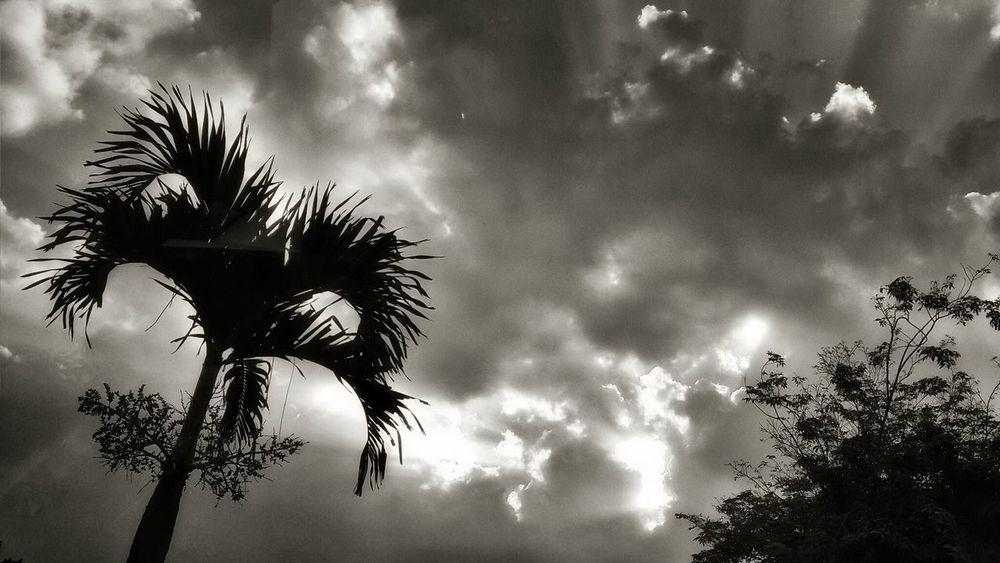 Feeling so Monochrome Blackandwhite EyeEm Best Shots - Sunsets + Sunrise AMPt - Escape