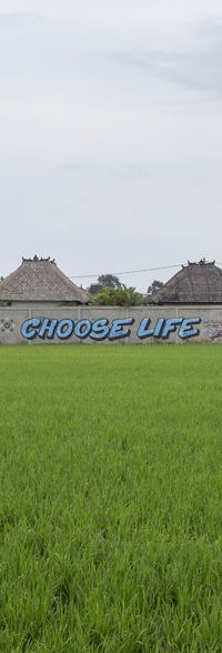 Choose Life Graffiti Grass Green Color No People Outdoors Scenics Sky Tag Tranquility Vertical