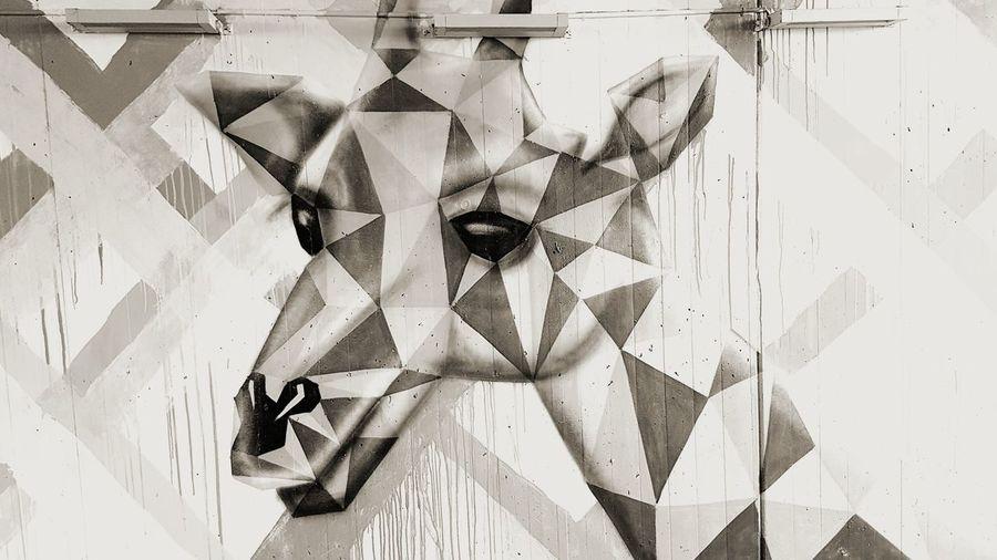grafitti Streetphotography Street Art/Graffiti Grafitt Austria EyeEm Gallery EyeEm Selects Tirol  Print Mobilephotography Mobile Phone Mobilephoto Close-up ArtWork Geometric Shape Composite Image Origami Hexagon Artistic