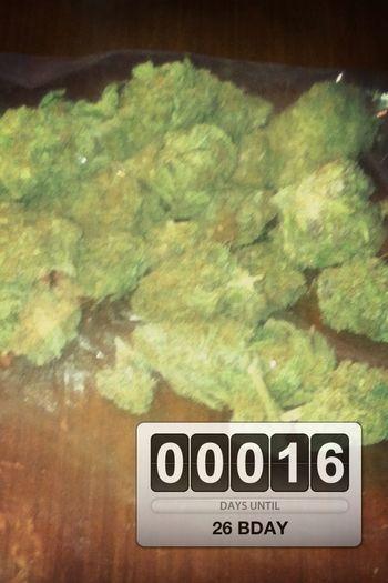 Bday Countdown