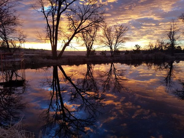 Reflection Lake Water Sunset Sky Cloud - Sky Nature Silhouette Tranquility Beauty In Nature Tree Tranquil Scene Outdoors Scenics No People Day USA A glimpse into an alternate reality?