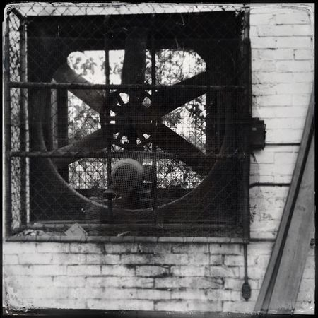 """The Fan"" ... Monochrome Bw_collection Blackandwhite Tintype Shootermag AMPt_community NEM Black&white Monochrome Photography"