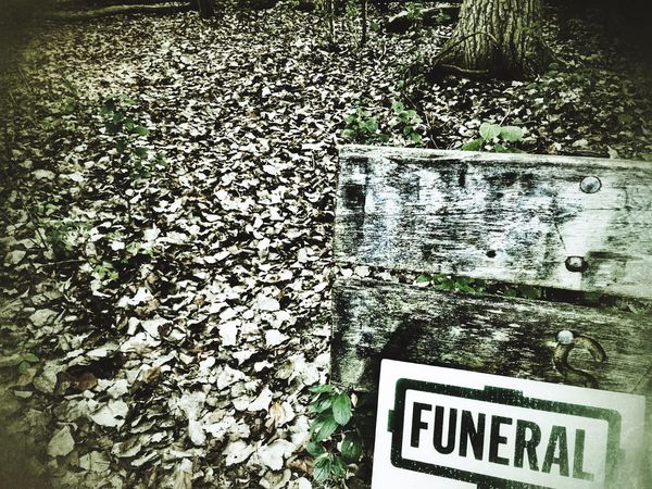 Funeral for the fallen leaves Text Western Script Communication Sign No People Day High Angle View Plant Nature Green Color Outdoors