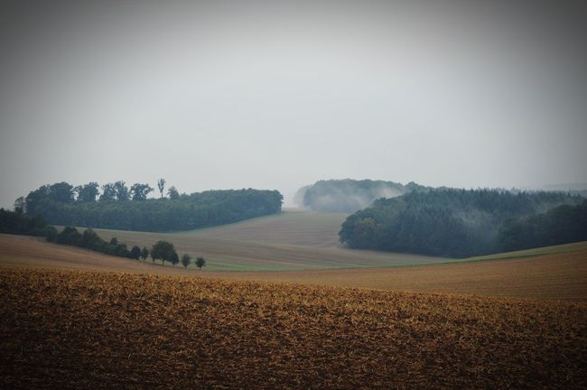 Landscape Agriculture Tranquil Scene Field Rural Scene Fog Foggy Farm Scenics Tranquility Frog Plough Nature Cultivated Land Crop  Growth Sunrise - Dawn Agricultural Landscape_photography Ausblick Aufs Land Cloudscape Outdoors