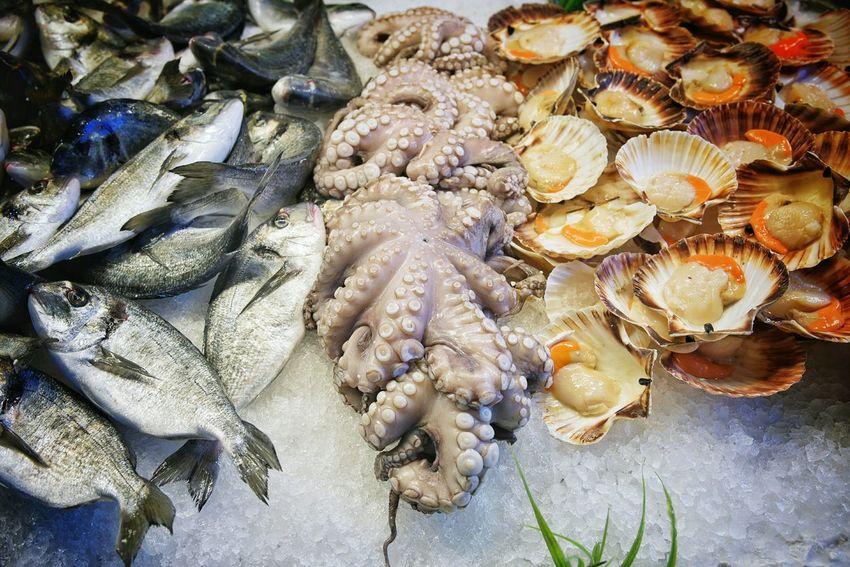 fresh fish Fish Market Fresh Fish Market Fresh Food Food Market Fish Octopus Scallop Seafoods Seafish Sea Fish Freshfish Fresh Fish Bass Fish EyeEm Best Shots EyeEm Best Edits EyeEm Gallery Food Stories