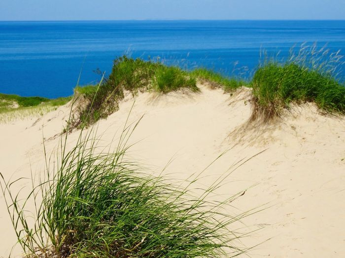 Sand dune overlooking Lake Michigan Beach Sea Land Water Sky Sand Plant Horizon Over Water Tranquil Scene Clear Sky No People Grass Beauty In Nature