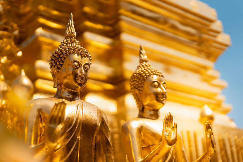 golden buddha statue whith blurred golden pagoda background, selective focus, buddhist holy day concept Asian  Bright Buddha Buddhism Buddhist Ceremony Culture Day Focus Golden Holy Monk  Pagoda Religion Selective Statue Symbol Temple Thai Thailand Yellow Sculpture Spirituality Belief Art And Craft