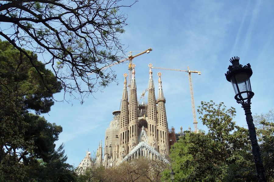 Architecture Architecture Barcelona Barcelona, Spain Building Exterior Built Structure Gaudi Growth Landmark Low Angle View Outdoors Place Of Worship Religion Sagrada Familia Sky The Architect - 2017 EyeEm Awards Travel Destination Travel Destinations Travel Photography Tree Under Construction...