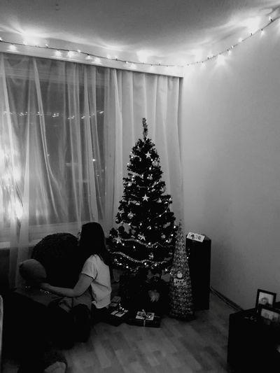 Christmas Tree Christmas Indoors  Living Room Sitting Celebration Home Interior