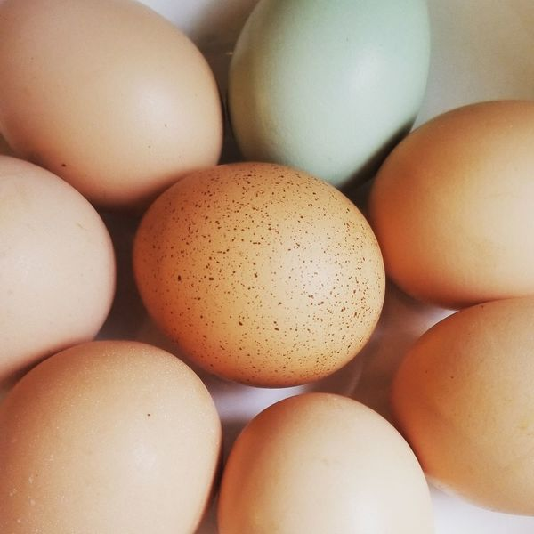 Egg EyeEm Selects Egg Yolk Egg Carton Easter Brown Backgrounds Food Staple Full Frame Eggshell Raw Food Dairy Product Nest Egg