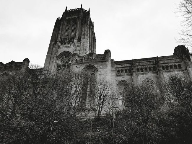 Cathedral Architecture History Built Structure Building Exterior Outdoors Tree No People Day Liverpool Liverpool Cathedral Black & White Black And White Photography Spooky City Beauty In Nature Low Angle