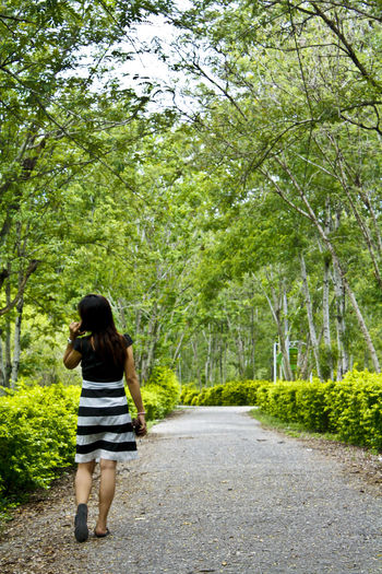 Rear view of young woman walking on road amidst trees at park