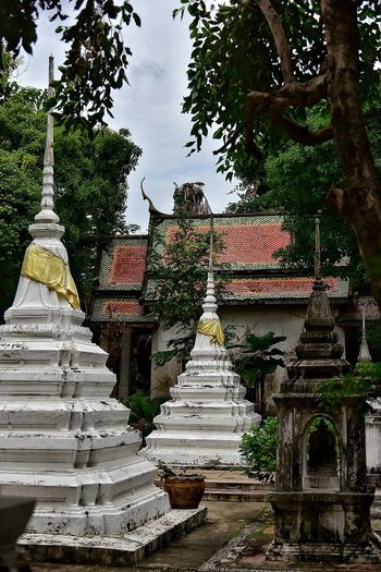 Religion Pagoda Tree Travel Destinations Architecture Outdoors No People Spirituality Day Built Structure Sky