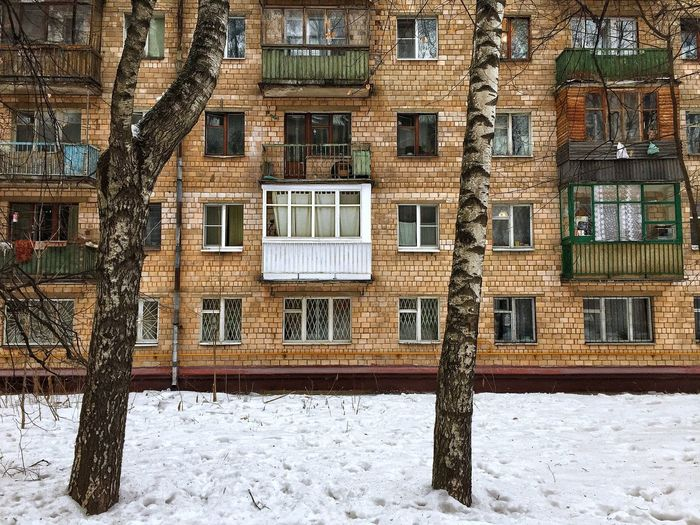 Snow Built Structure Cold Temperature Building Exterior Winter Architecture Window No People Day Covering Wall - Building Feature Land Residential District Field Building Outdoors Nature Frozen Communication