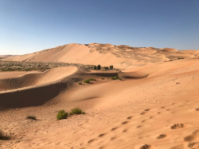 Abu Dhabi Rub Al Khali EyeEm Selects Sand Sand Dune Desert Arid Climate Landscape Nature Physical Geography Beauty In Nature Tranquil Scene