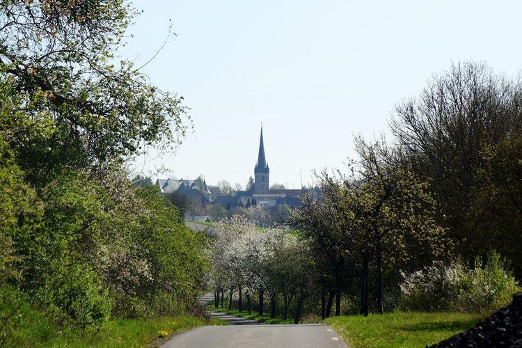 Schmolz City