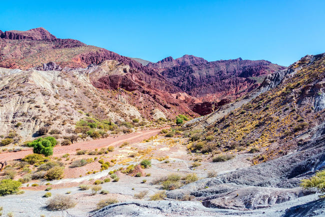 Barren red and gray desert landscape in Tupiza, Bolivia Arid Arid Climate Beauty In Nature Bolivia Cactus Canyon Countryside Desert Formation Formations Landscape Nature Red Rock Rocks Rugged Rural Scenics South America Tourism Travel Travel Destinations TUPIZA