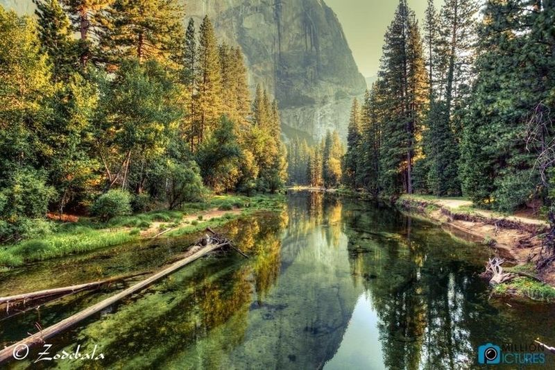 Yosemite Valley and River , California ❤️❤️💙💙 hye guys, i'm back now 😀 sorry, i'm so bz today 😀 Water Tree Green You Follow My Eye Em 💙 I Follow Back Beautiful Amazing View First Eyeem Photo Hello World ❤ I Love Travel Real Picture Very Nice 😱😱 California