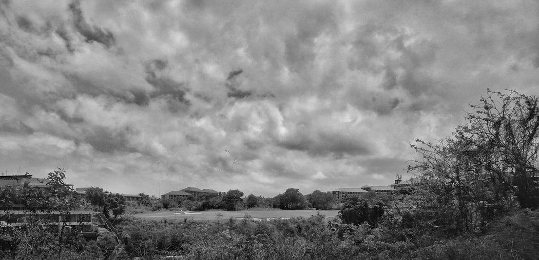 Golf Cloud -