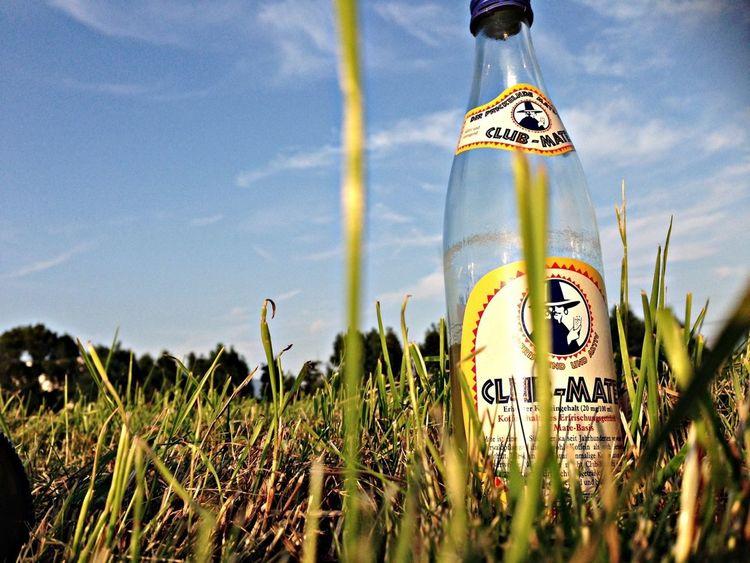 Enjoying The Sun Grass Beautiful Day Club Mate
