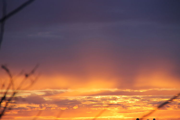 Backgrounds Beauty In Nature Cloud - Sky Day Nature No People Nofilter Nofilterneeded Orange Color Outdoors Scenics Silhouette Sky Sunset Tranquil Scene Tranquility