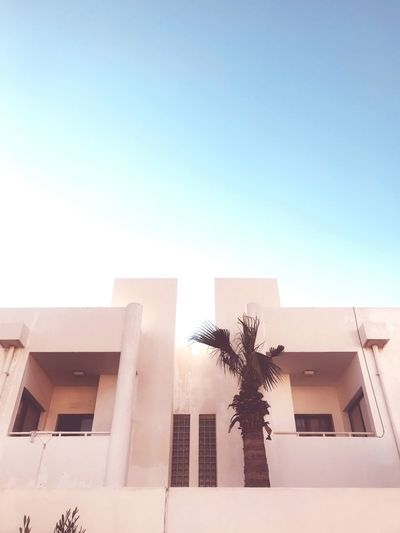 Qatar Chapters