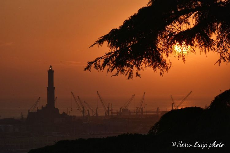 Da Spianata Castelletto Genova Italy Sunset_collection Sunset Silhouettes Lanterna Di Genova City Tree Sunset Nautical Vessel Silhouette Social Issues Business Finance And Industry Factory Water Smog