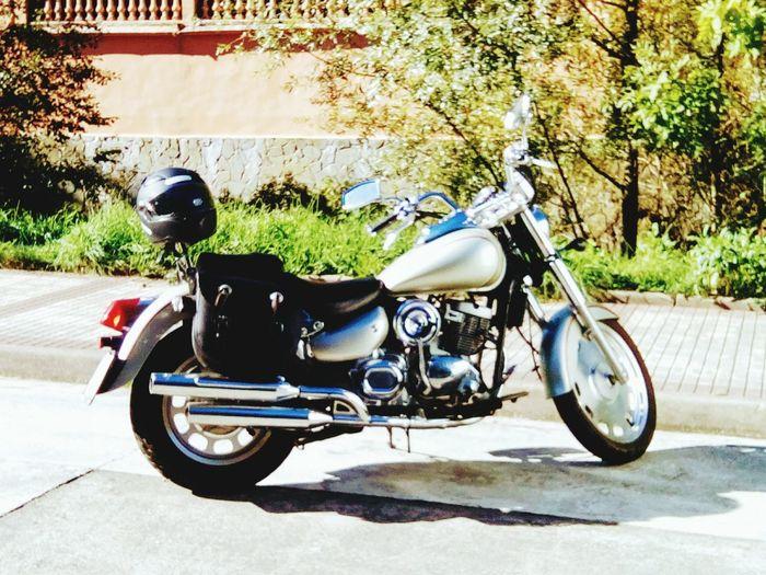 EyeEm Selects Motorcycle