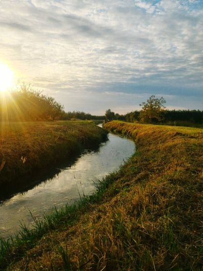 River Sun EyeEm Nature Lover Nature_collection