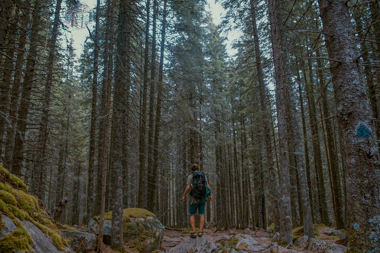 The Great Outdoors - 2019 EyeEm Awards Tree Forest Land Plant Tree Trunk Real People Trunk WoodLand One Person Standing Leisure Activity Tranquility Nature Lifestyles Full Length Day Beauty In Nature Growth Young Adult Outdoors