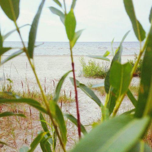 Beach Sea Baltic Sea Learn & Shoot: Layering