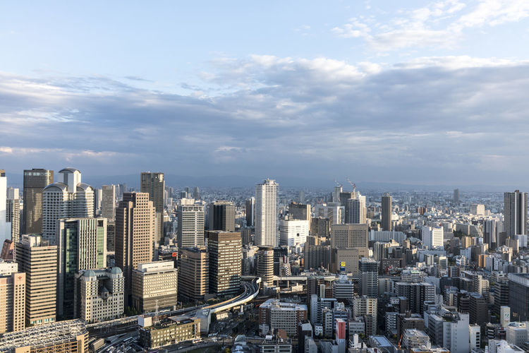 Hachiko Japan Japan Photography OSAKA Osaka,Japan Osaka-shi,Japan Shibuya Skyline Street Photography Streetphotography Tokyo Tokyo Street Photography Tokyo Tower Tokyo,Japan Tourism