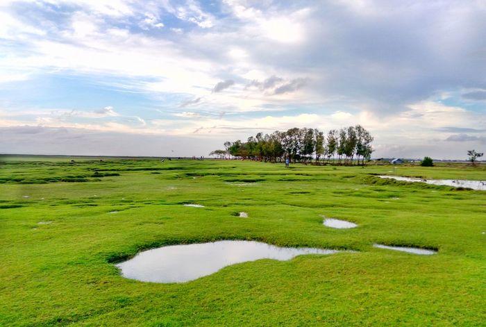 Landscape Bangladesh 🇧🇩 Green Color Putting Green Calm Beach