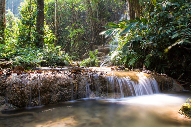 Chiang Rai, Thailand Beauty In Nature Chiangrai Day Flowing Water Forest Growth Long Exposure Motion Nature No People Outdoors Plant Pu Kang Waterfall Rock - Object Scenics Tranquil Scene Tranquility Tree Water Waterfall