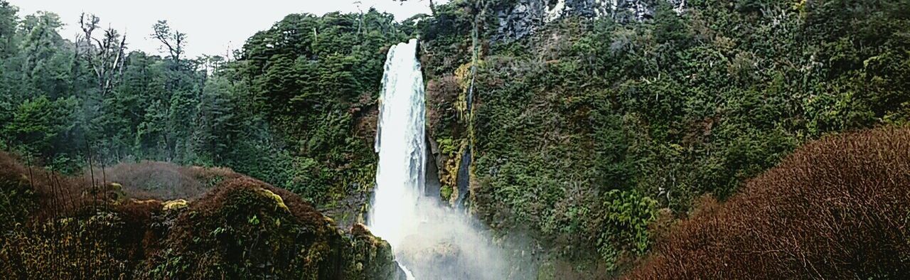 """Salto del León"" waterfall... Just, perfectly beautiful. Chile Forest Waterfall Salto Del León"