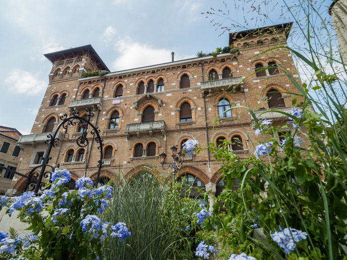 Treviso Arch Architecture Building Building Exterior Built Structure Cloud - Sky Day Flower Flowering Plant Growth History Italy Low Angle View Nature No People Old Outdoors Plant Ruined Sky The Past Travel