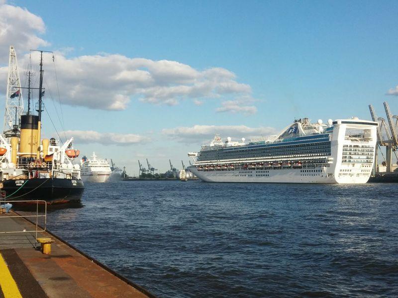 Hamburg Hamburg Harbour Övelgönne Museumshafen Stettin Caribbean Princess Kreuzfahrtschiff Elbe Elbe River Ms Europa Hafengeburtstag Hafenliebe Kreuzfahrt