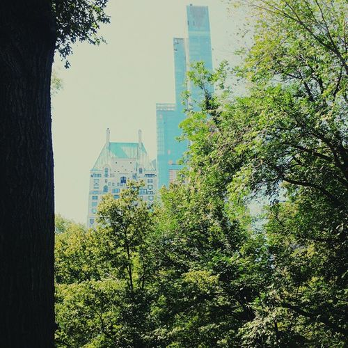 Since my camera doesn't work at tge moment. Here's a picture from my trip to NYC. Vscocam Bestofvscso Topvsco Vsvo vscoism latergram vscogood socality sky nyc newyork summer trees buildings icantcomplain domore adventure