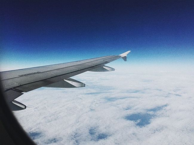 I'm so in love with the sky Flight Sky Skylovers Clouds And Sky Clouds Blue Sky White