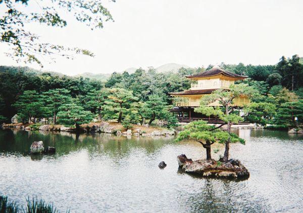 Temple Japanese Culture Japan Kinkakuji Kyoto,japan Instantphoto Relaxing Hi! Enjoying Life Japanese  Silent Moment