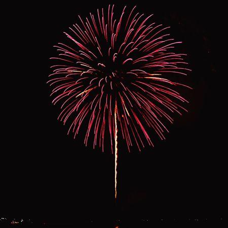 Fireworks in Ocean Expo Park Okinawa Fireworks Motobu Bise Nikon OKINAWA, JAPAN Nikon D7000