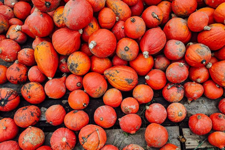 Full frame shot of hokkaido pumpkins